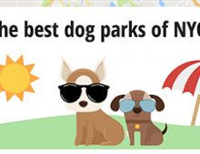 Best Dog Parks of NYC
